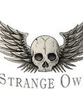 STRANGE-OWL-Lille-concert