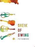 Sheik-of-Swing-Toulouse-concert