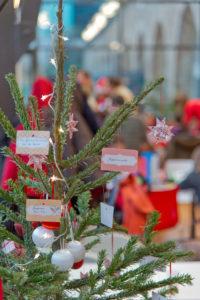 Ou-deposer-son-sapin-une-fois-que-Noël-est-fini-Esplanade-du-Belvedere