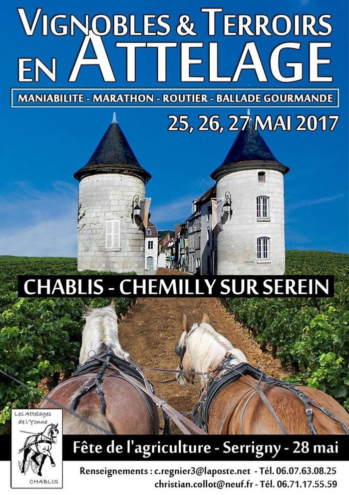 Vignobles-et-Terroirs-en-attelage-Chablis-Chevilly-sur-Serein-89-Chemilly-sur-Serein-1
