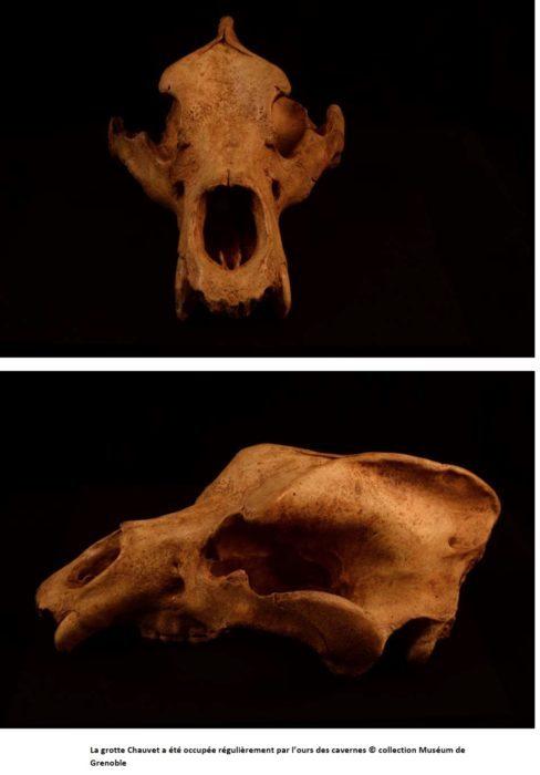Exposition préhistoire