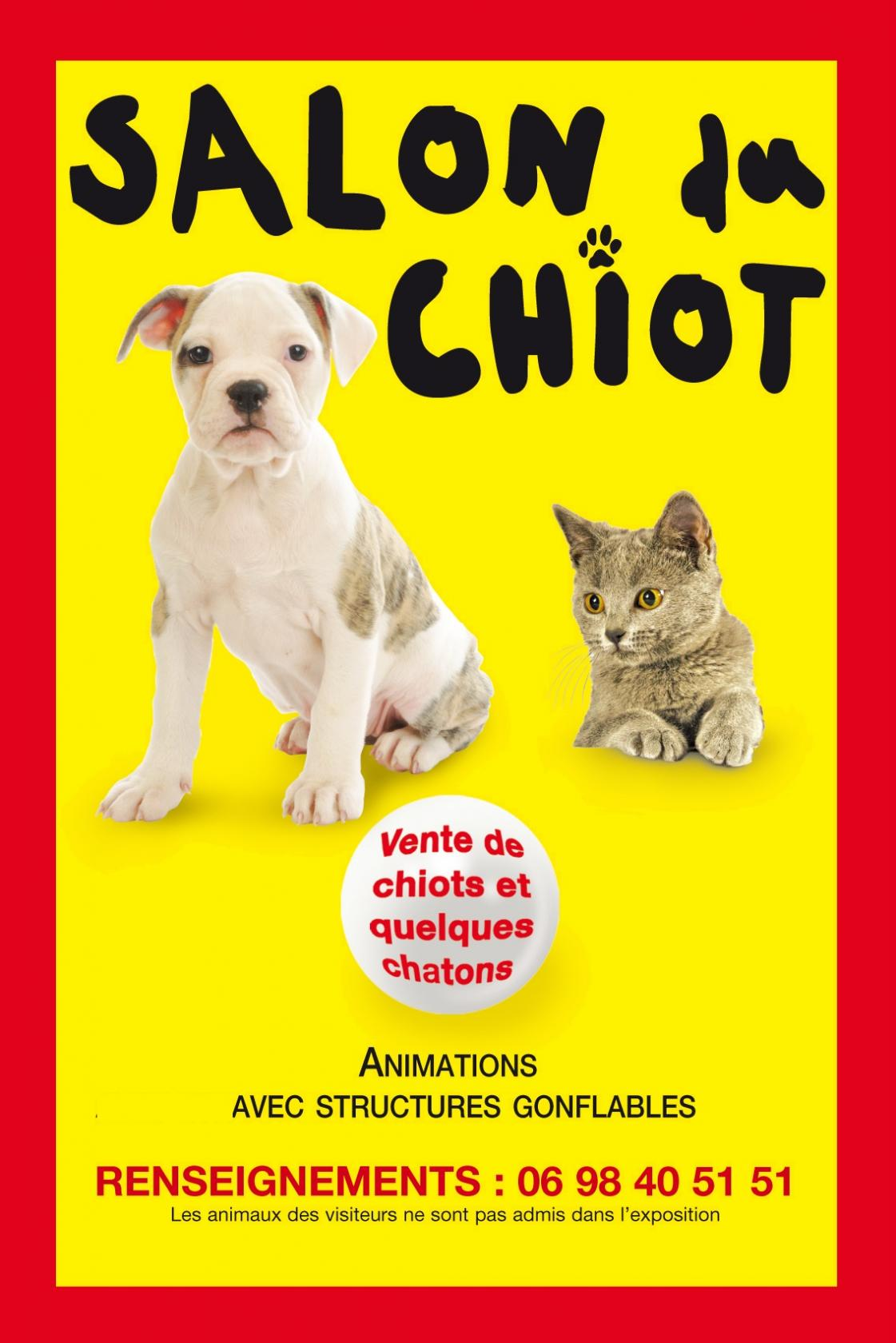 salon du chiot saint malo 6 mai 2017 unidivers