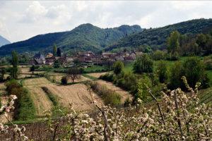 Conférences sur le thème du paysage au musée du Bugey-Valromey