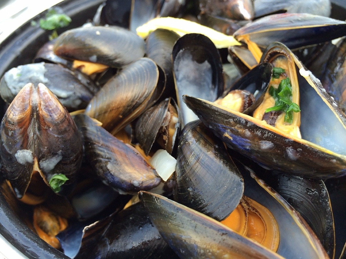 Moules-frites SNSM Fouesnant