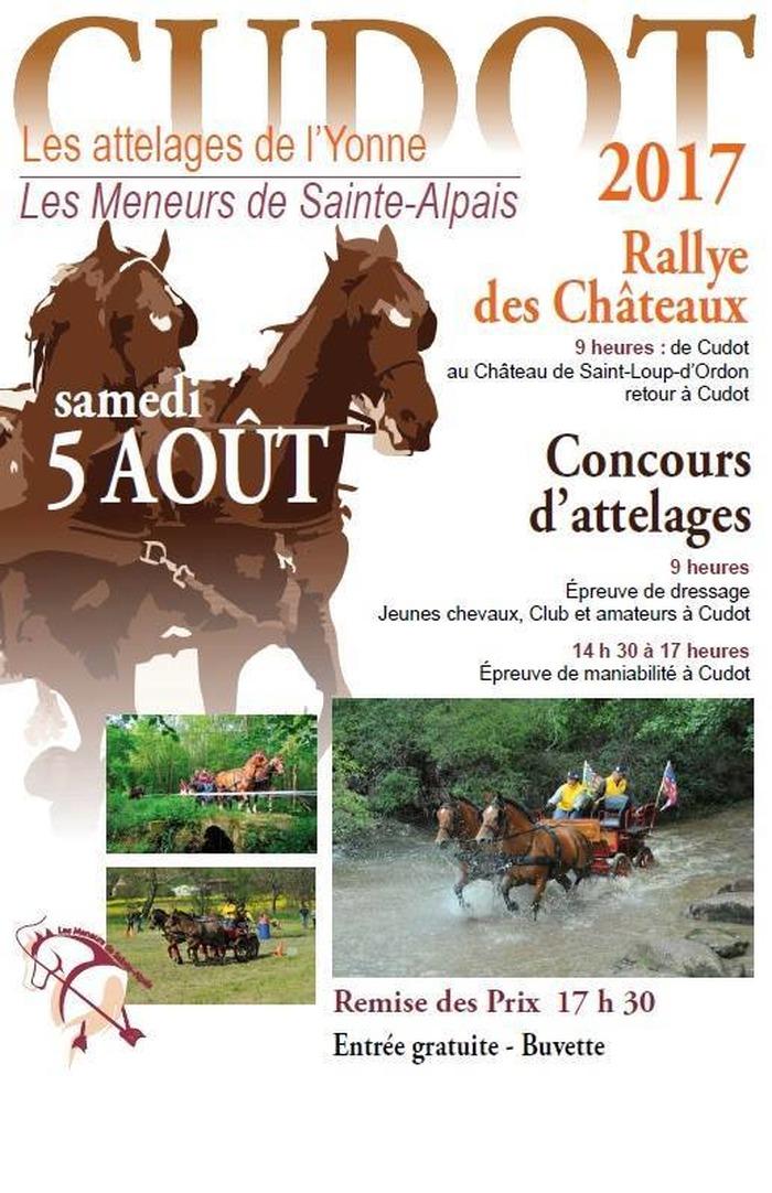 Rallye des Châteaux, à Cudot (89)