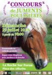 Concours local modèle et allures Chevaux de Trait, à La Roche sur Foron (74)