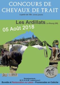 Concours modèle et allures Chevaux de Trait, à Les Ardillats (69)