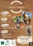 CAVALE COMTOISE ET CONCOURS MODELES ET ALLURES TRAIT COMTOIS, A JUSSEY (70)