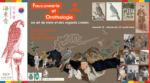 EXPOSITION : FAUCONNERIE ET ORNITHOLOGIE, UN ART DE VIVRE ET DES REGARDS CROISES