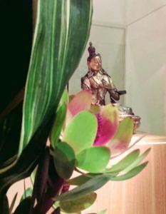 Les Printemps et les Automnes - Exposition d'Ikebana