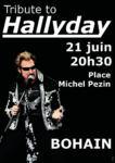 Tribute to Hallyday