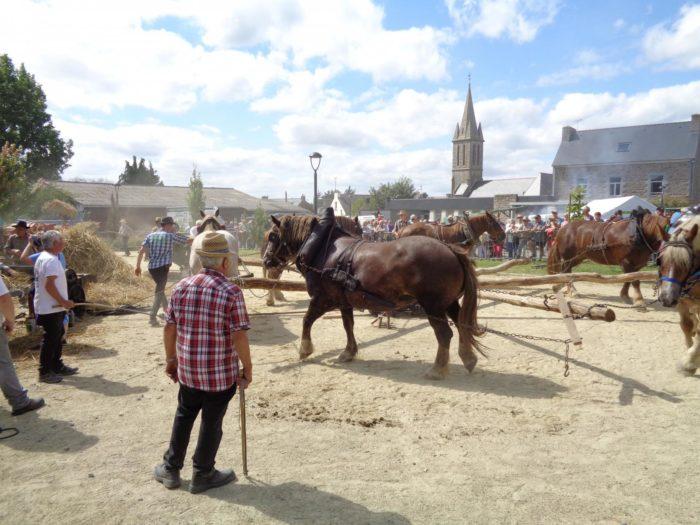 http://www.tourismebretagne.com/a-voir-a-faire/les-evenements/fete-des-battages-et-des-vieux-metiers