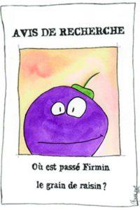 Où est passé Firmin le grain de raisin?