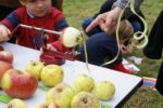 Balade Nature : Au Royaume de Pomme de Reinette et Office de Tourisme
