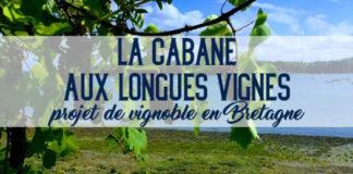 La cabane aux longues vignes, Edouard Cazals