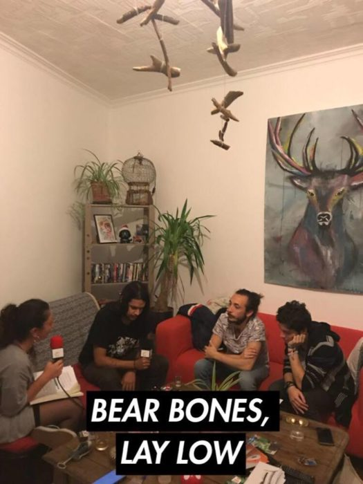 Bear Bones Lay Low