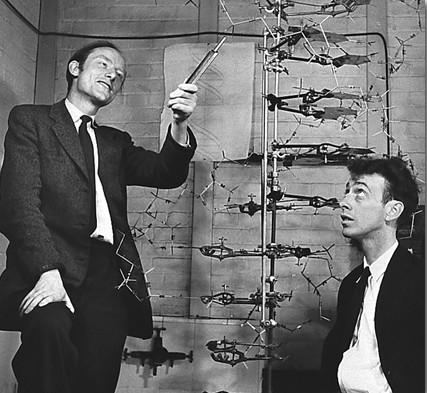 Watson et Crick adn