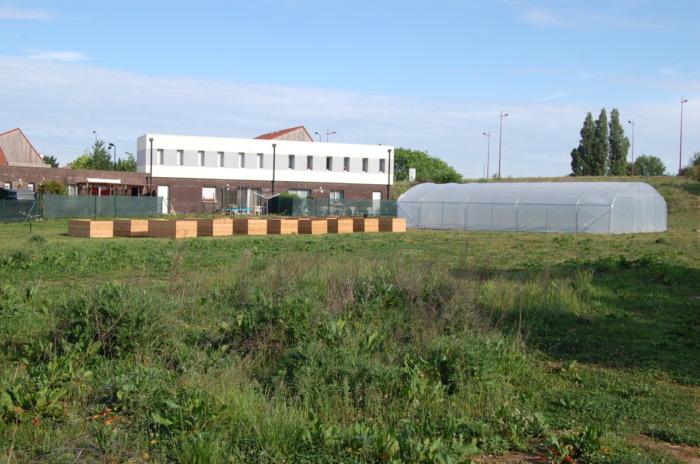 ferme urbaine