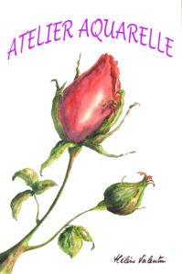 ATELIER AQUARELLE BOUTON DE ROSE Atelier d'Hélène Valentin