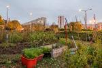 Balade dans nos jardins secrets Écomusée du Val-de-Bièvre