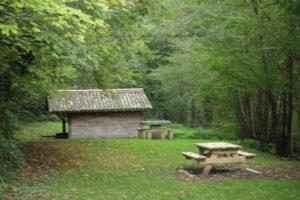 Promenade libre en forêt Bourg de Saint-Romans-lès-Melle