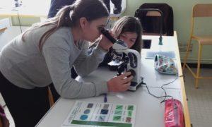 Enquête scientifique sur le littoral - scolaires Collège Anita Conti