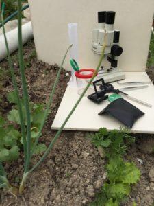 Du laboratoire au jardin : pratiques culturales et biocontrôle Espace Dewailly