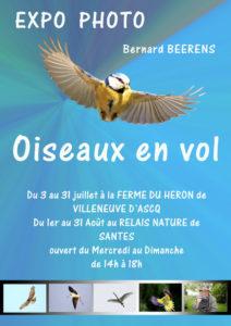 """Exposition photos """"Oiseaux en vol"""" Ferme du Héron"""