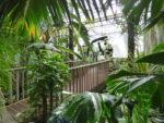 Juan Pablo Villegas d'après le Jardin Jardin Botanique