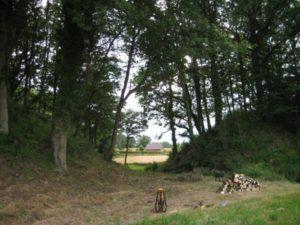 Découvrez les mottes castrales de l'An Mil La Tour-Saint-Austrille