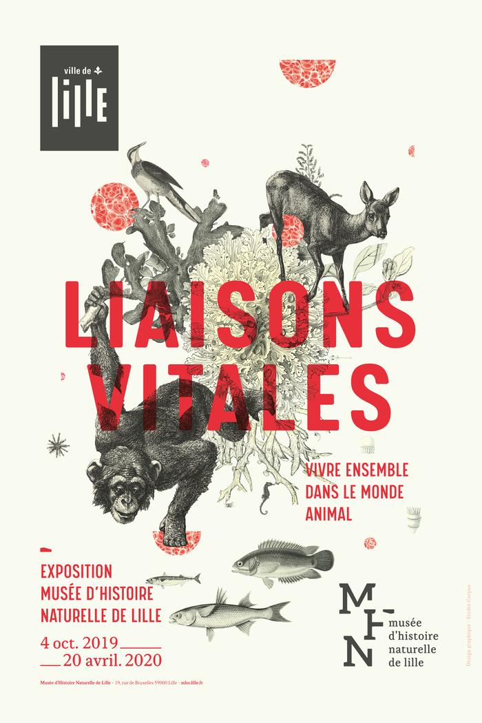 Liaisons Vitales Musée d'histoire naturelle de Lille