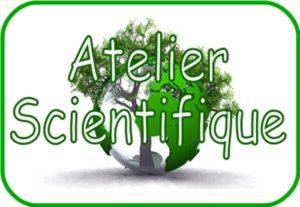 Aux origines de la vie & Hector l'arbre mort Mediathèque Langevin