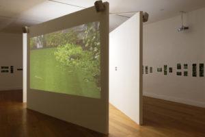 Découverte des expositions et des salles historiques Musée départemental d'art contemporain
