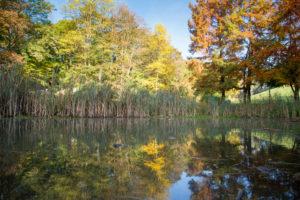 Visite libre du parc des Larris Parc des Larris