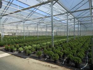 Un centre horticole municipal de haute qualité environnementale Centre horticole municipale