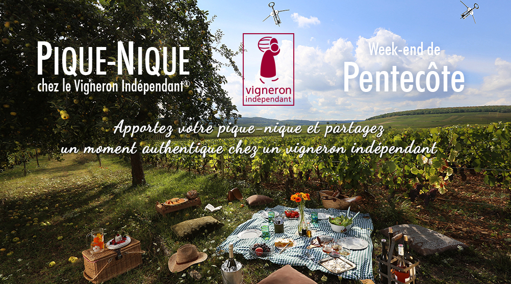 Pique-nique chez le vigneron indépendant 2020-05-30 Amboise