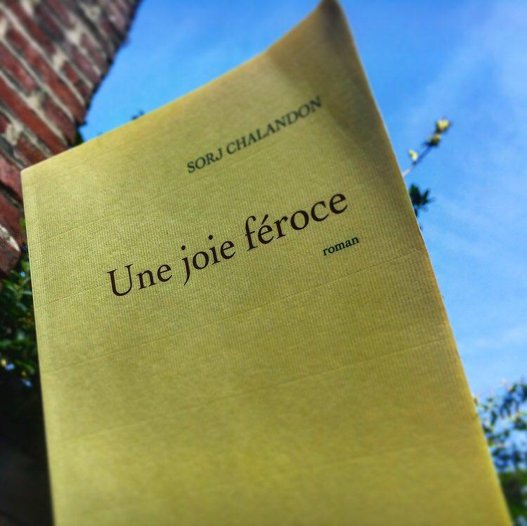 ROMAN DE SORJ CHALANDON : DURE, FOUDROYANTE, MAIS SI JUSTE JOIE FÉROCE