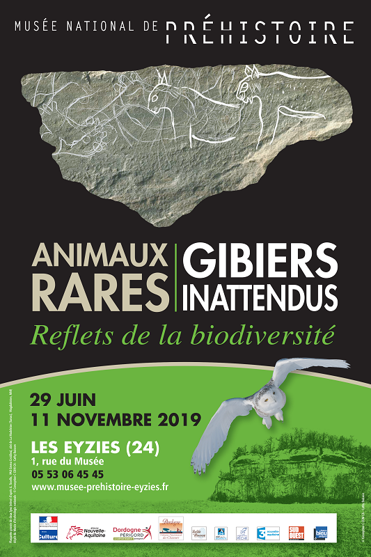 Exposition : animaux rares
