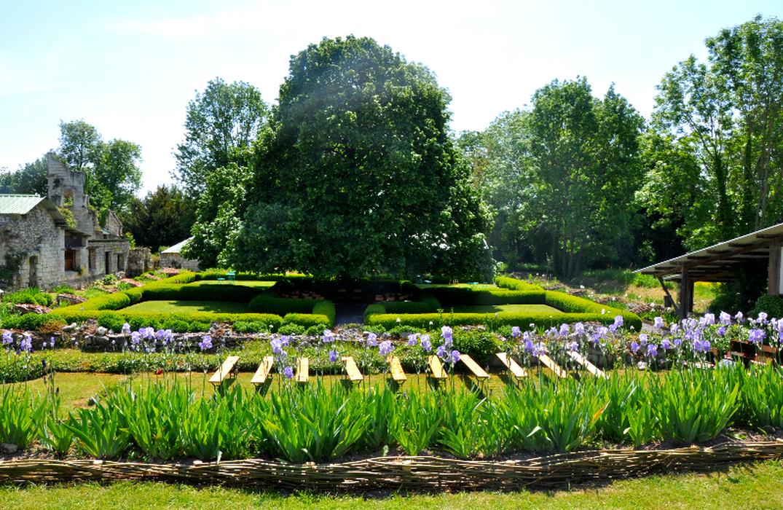 Journée aux iris au Prieuré de Moreaucourt L'Étoile   2021-05-15
