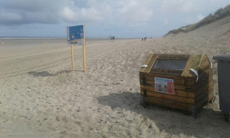 Beau geste pour l'environnement - nettoyage de plage