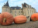 Halloween au château Azay-le-Ferron   2021-10-31