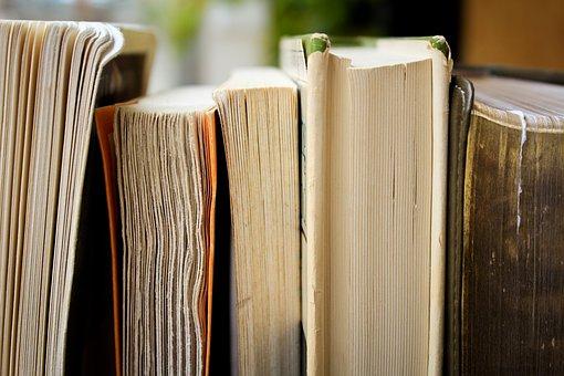 Rentrée littéraires