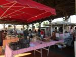 Marché traditionnel Montfort-en-Chalosse   2021-01-27