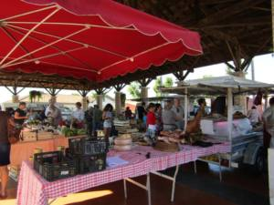 Marché traditionnel MONTFORT EN CHALOSSE 2019-10-02
