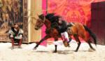 Spectacle chevaux et rapaces au château de Chambord - François 1er
