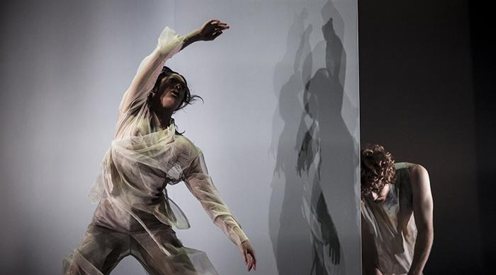 Dancenorth Australia - Dust Chaillot – Théâtre national de la Danse