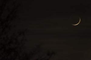 Quand les étoiles et la lune apparaissent Institut des Cultures d'Islam (ICI)