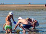 Balade découverte littorale à Luc-sur-mer Langrune-sur-Mer