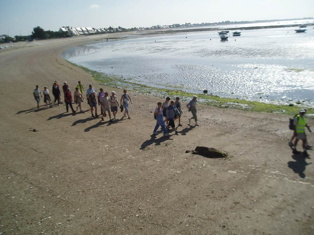 Les randonnées du jeudi 1er semestre Muzillac
