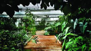 Nature en famille : atelier participatif